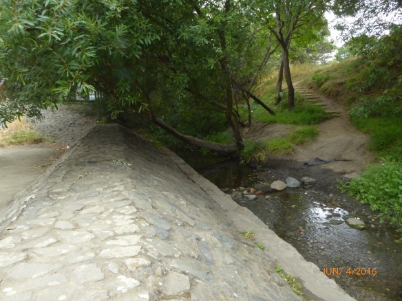 Cerrito Creek crossing at Santa Clara StAlbany Hill