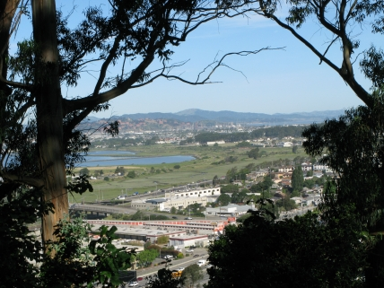 view from N side Albany Hill; marshes, Mt. Burdell; photo by Margot Cunningham