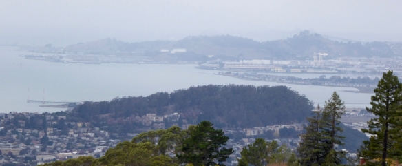 Albany Hill from LHS