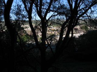cities east of Albany Hill; view from oak woodland; photo by Margot Cunningham