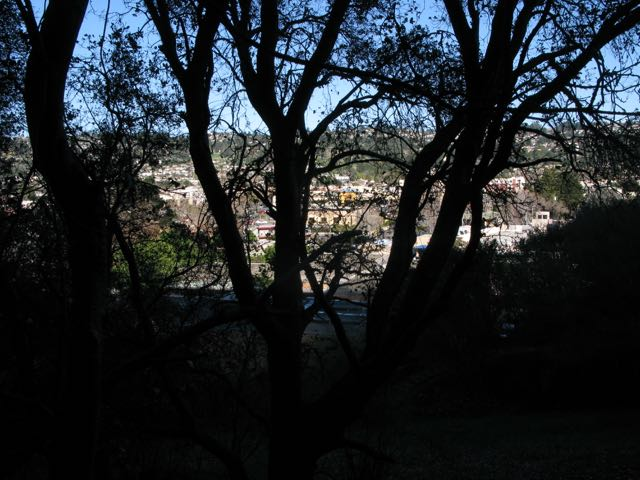 cities east of Albany Hill; view from oak woodland